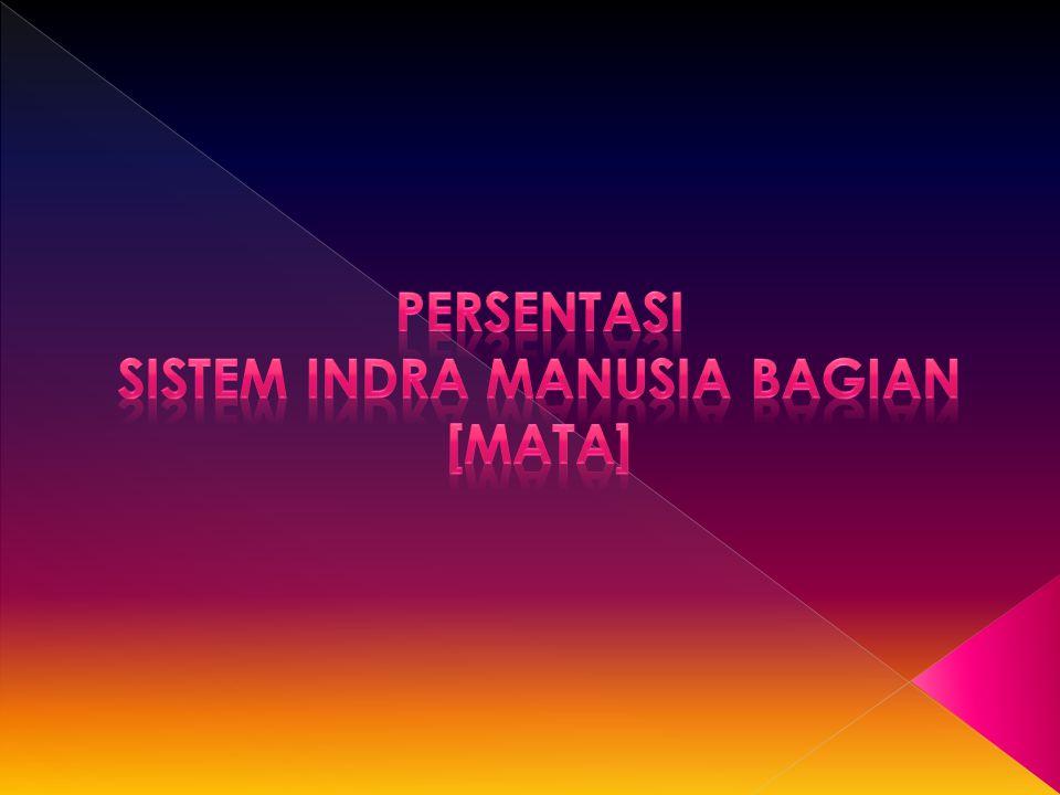 Persentasi Sistem Indra Manusia bagian [Mata]